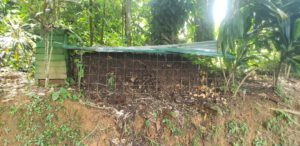 upcycling how to build a DIY compost shed - 1 Compost_Shed_-_Old_Pile