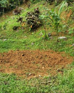 How to Hugelkultur A Step by Step Guide - Cover Yard Waste with Dirt from Hole
