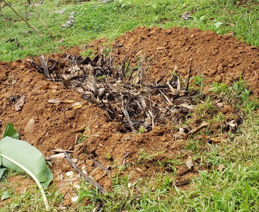 How to Hugelkultur A Step by Step Guide - Fill Hole with Yard Waste 2