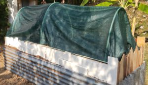 how to upcycle a raised garden bed - hoop enclosure closed