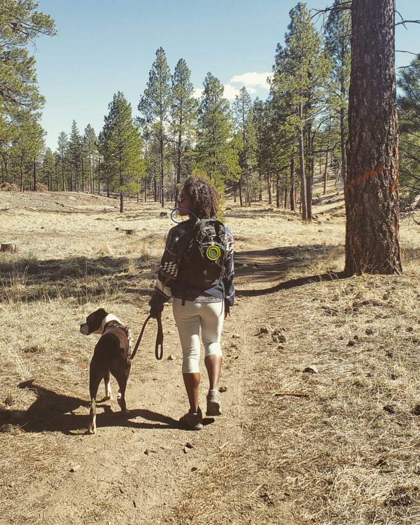 back in the states a life update - hiking at buffalo park in flagstaff